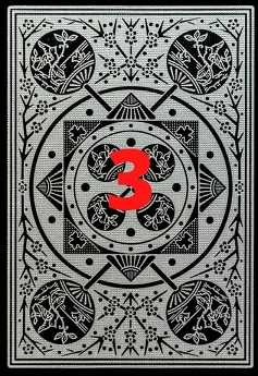 rubaschka-kart-taro3